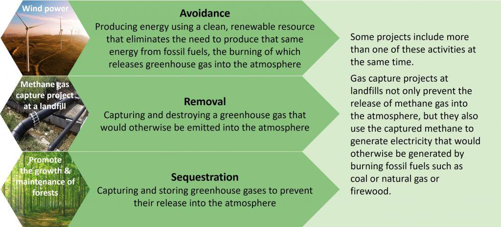 Carbon Offset Generation